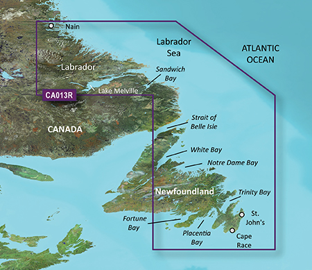 Garmin VCA013R G2 Vision Labrador Coast