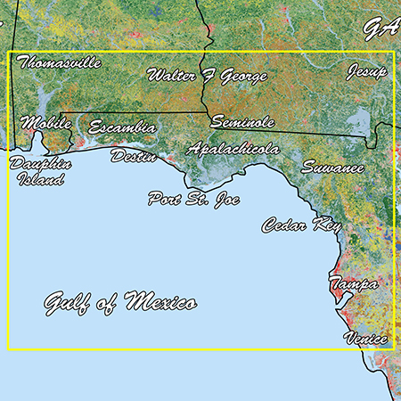 Garmin Emerald Coast Standard Mapping Premium - # 010-C1190-00
